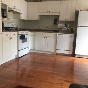Basement available for rent at pine drive close to Lawson mall