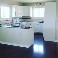 Mills Painting Professional Paint at an affordable price