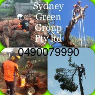 Professional and Affordale Tree Services / Stump Grinding