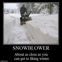 Affordable Snow Removal! Man and Snowblower+Tractor for lots