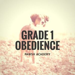 THE PAWSH DOG TRAINING ACADEMY - GRADE 1 OBEDIENCE CLASSES