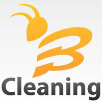 Affordable Professional Cleaning Services for Real Estate Agents