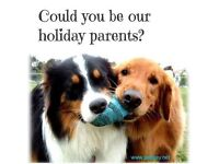More dog lovers needed in the Newcastle, North Tyneside and Northumberland areas