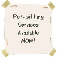 Affordable and Reliable Pet-sitting Services!