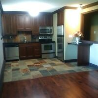 Condo for Rent, Whyte UofA area