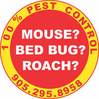 LICENSED PEST CONTROL 100% MOUSE & RAT CONTROL 905.295.8958