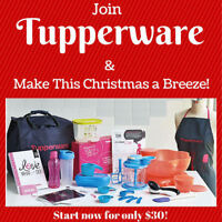 Become a Tupperware Consultant.