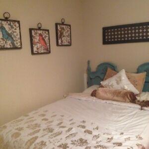 Summerland furnished walkout basement suite