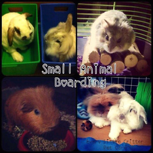 SMALL PET BOARDING FOR RABBITS, GUINEA PIGS, ETC