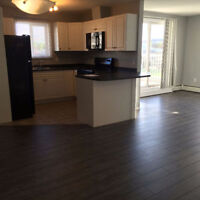Painting service and laminate floor installation