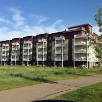 LEDUC - 2 BED + DEN AVAILABLE! 1 MONTH RENT FREE!! MACEWAN GREEN
