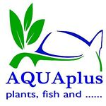AQUAplus