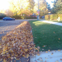 Yard Clean Ups For Fall / Leaf Removal