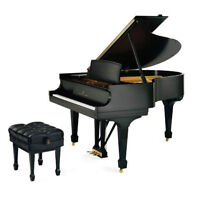 Master Classical Piano Instructor Teaching (All ages)