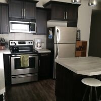 Walkout basement suite for rent in Penhold