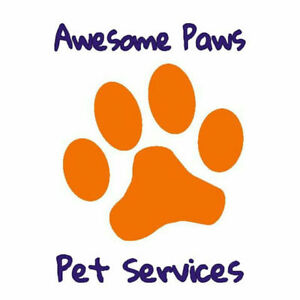 Dog Boarding, Pet Sitting and Dog Walking