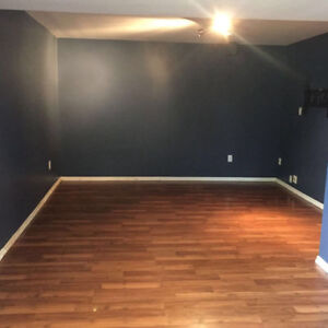 NEWLY RENOVATED - 2 bedrooms @ St Vital - immediately.