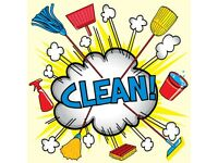 Experienced Domestic Cleaner/Housekeeper Available.