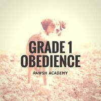 THE PAWSH ACADEMY - GRADE 1 OBEDIENCE