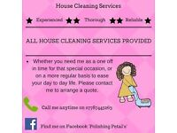 Polishing Petal's - House Cleaning Service