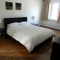 FURNISHED condo apartment - 3 bedrooms - wifi, cable TV, monthly