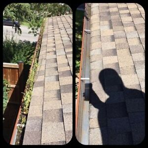 Full serve fall clean up. Gutters, windows, lawns, siding & more London Ontario image 1