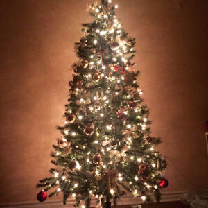 Christimas Tree plus all ornaments and other seaonal stuff