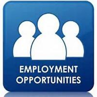 LOOKING FOR EMPLOYMENT
