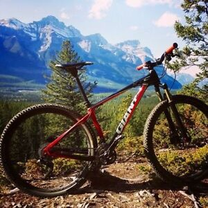 For Sale Hardtail Giant XTC Carbon Custom- reduced price