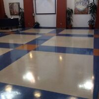 FLOOR STRIPPING, WAXING, BUFFING, 9057829005