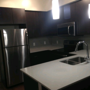 BRAND  NEW ONE BEDROOM IN OLD STRATHACONA