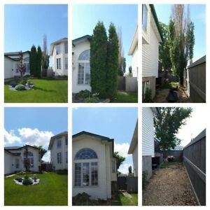 REDUCED!!!! $700.00/MONTH - UTILITIES INCLUDED - ROOMMATE WANTED Edmonton Edmonton Area image 1