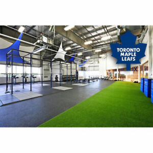 Indoor GymTurf-Synthetic, ArtificialGrassfor Fitness Clubs