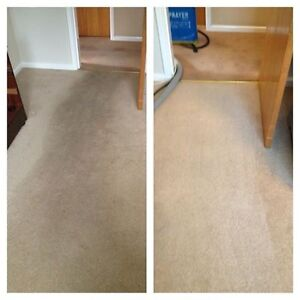 Get your carpets steam cleaned North Strathfield Canada Bay Area Preview
