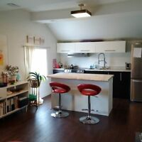 GORGEOUS APARTMENT, SOARING CEILINGS, UPPER LEVEL