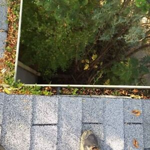 Full serve fall clean up. Gutters, windows, lawns, siding & more London Ontario image 2