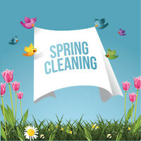 20 yrs experience THE MASTER CLEANERS SPRING TIME CLEAN