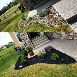 Fall Cleanup - Aeration - Leaf Pickup - Cut & Trim -Starting@$50 London Ontario image 4