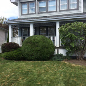 AFFORDABLE TREE PRUNING AND HEDGE TRIMMING London Ontario image 5