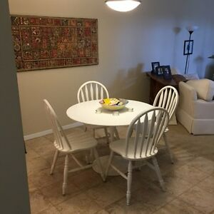 Executive 1 bedroom fully furnished apartment in Old North London Ontario image 4