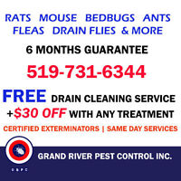 GRPC-Affordable + Reliable Pest Control Services in Brantford