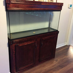 55 Gallon Aquarium, Oak Stand & Canopy, Accessories