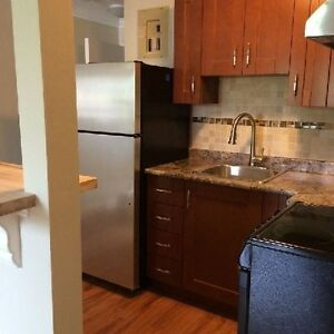 2 SEPARATE RENOVATED 1 BEDROOM APARTMENTS ABOVE STORE