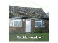 2 bed semi detached bungalow Axminster Devon