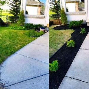 Full serve fall clean up. Gutters, windows, lawns, siding & more London Ontario image 10