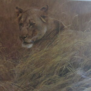 Lioness In The Grass Limited Print Signed By Robert Bateman Kitchener / Waterloo Kitchener Area image 1