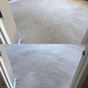 Highest Quality Carpet Cleaning & Restoration Edmonton Edmonton Area image 1