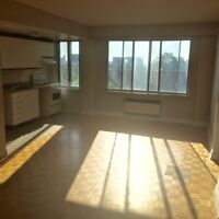 Spacious 2 bedroom apt 5' Guy Concordia,available now