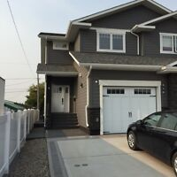 Two Storey Condo/Basement suite