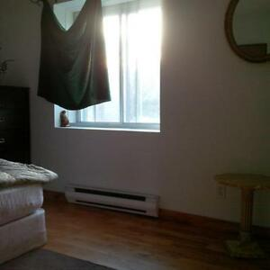Roommate Wanted - Great Location & All Inclusive Gatineau Ottawa / Gatineau Area image 1
